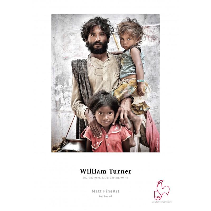 William Turner 310g