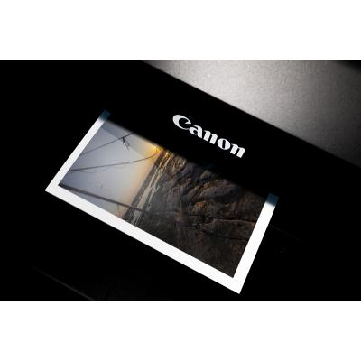 Canon Brillant 300g + Caisse Américaine