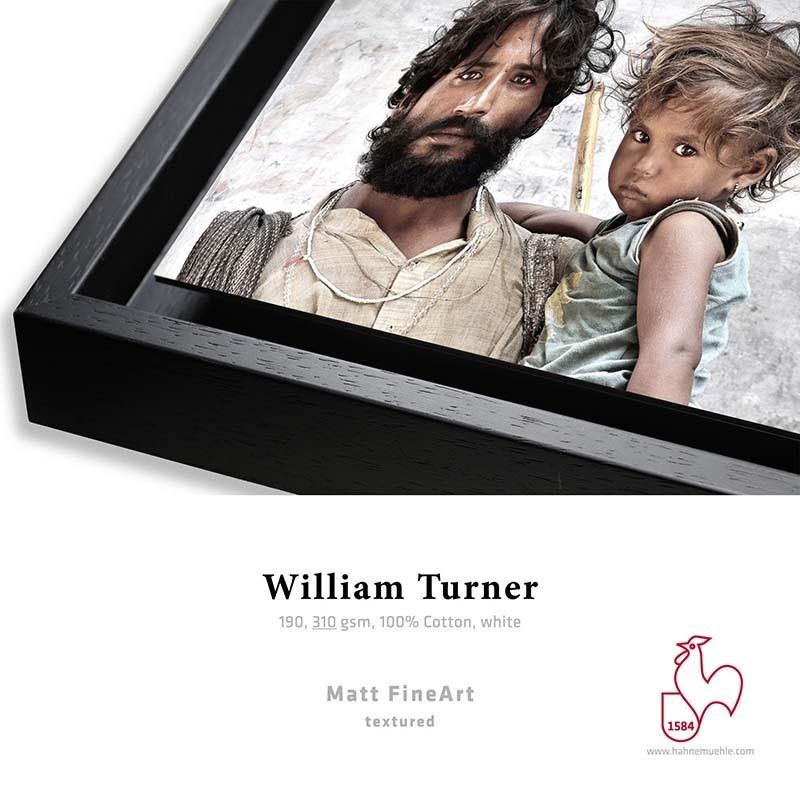 Détail William Turner 310g + Caisse Américaine