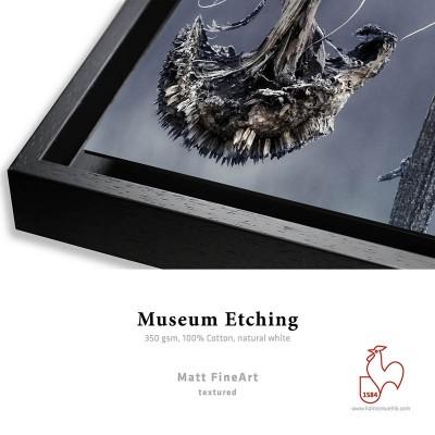 Détail Museum Etching 350g + Caisse Américaine